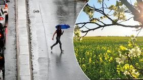 Lijáky vystřídají v Česku tropy. Meteorologové řekli, jaké nás čekají prázdniny