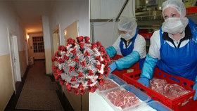 Němce trápí šíření koronaviru v masokombinátech. Zaměstnanci se mačkají v ubytovnách