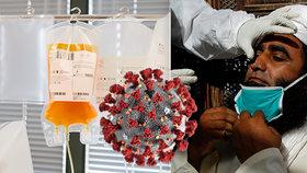 """Až 63 tisíc za plazmu pacienta vyléčeného z covid-19. Černý trh s """"lékem"""" pohoršuje úřady"""