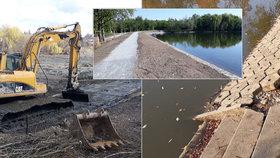 Bahno z rybníka odhlučňuje dálnici D11: Xaverovská nádrž je konečně revitalizovaná