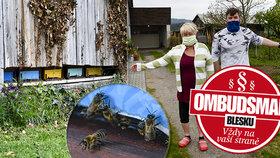 Milena (69) si stěžuje na včelí teror! Vnuci kvůli sousedovi včelaři nemohou na zahradu