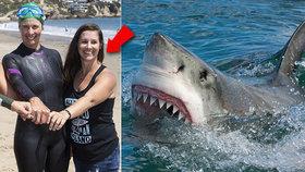 Velký bílý žralok se zakousl do mámy tří dětí a stáhl ji pod hladinu: Ubránila se holýma rukama