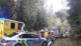 Na Karlovarsku havaroval náklaďák vezoucí dřevo: Těžké klády zasáhly osobní vůz!