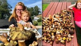 Ráj houbařů v Krkonoších: Děti tu nosí denně z lesa koše hřibů!