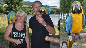 Exoti roztáhli křídla a na přehradě létali volně: Žárlivý Ozzy klove majitele do ucha i nosu