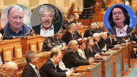 """Volby do Senátu nabídnou souboj bratrů i známé tváře. Uspět chce i majitelka """"havranů"""""""