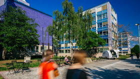 Areál kampusu v Dejvicích: Praha hledá autora, který má navrhnout úpravy veřejného prostranství