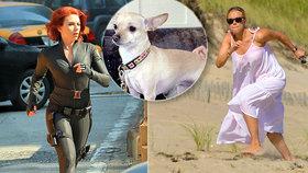 Herečka Scarlett Johanssonová supehrdinku nezapře: Po pláži naháněla »Palačinku«!