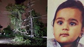 Chlapeček (†4) zemřel při děsivé bouři. Vichr na něj shodil strom