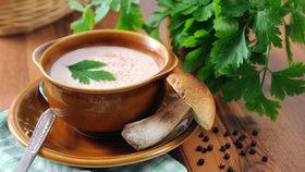 Hříbkový krém pro začátečníky: Vyzkoušejte tento jednoduchý recept bez jíšky