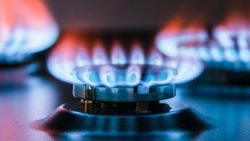 Cena plynu: Co ji tvoří a jak se mění