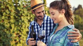 Podzimní výlety po Čechách: Kam vyrazit za dobrým vínem?