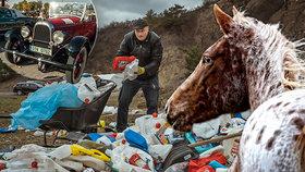 Tipy na víkend: Ukliďme Česko! Obdivujte koně, americké veterány i bitvy středověku