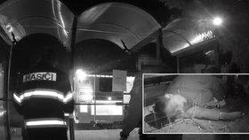 Opilec skončil na Hradecku zaklíněný v zastávce: Vyprostit ho museli hasiči