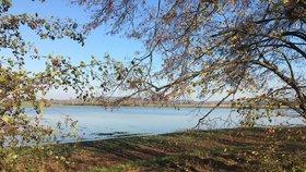 Tisíce hektarů orné půdy zůstávají pod vodu: Zemědělci se obávají velkých ztrát