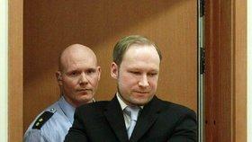 Jediné co Breivikovi kazilo u soudu radost byly želízka. Jinak se tvářil velmi spokojeně.