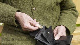 Čeští důchodci dostávají víc peněz než ti ze Slovenska. (Ilustrační foto)