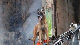 Záchranáři prohledávali trosky domu i za asistence psovodů