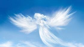 O co všechno můžete anděly požádat?