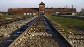 1,1 milionu lidí bylo zavražděno v osvětimských táborech.