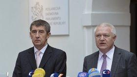 Předseda hnutí ANO Andrej Babiš a Jaroslav Faltýnek