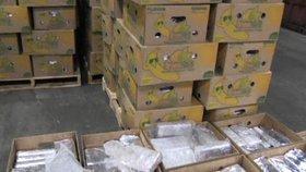 Kokain ukrytý v banánech? Nic tak neobvyklého, jak by se mohlo zdát! Na snímku zásilka, která dorazila do Belgie