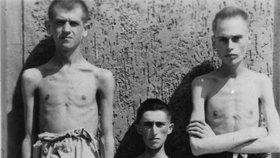 Tisíce lidí trpěly v koncentráku hlady a mučením.