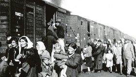 Z Treblinky už nebylo úniku zpět.