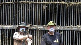Čeští chovatelé informují o nejnovějších událostech v gruzínské zoo