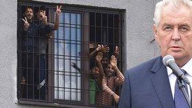 Prezident Zeman zavítal do Vyšních Lhot, kde se nachází uprchlický tábor