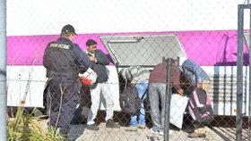 Příjezd prvních zadržených imigrantů do zařízení v Drahonicích, bývalé věznici na Lounsku