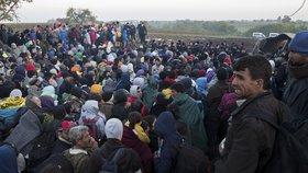 Uprchlíci na chorvatsko-srbské hranici