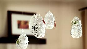 Pavoučí kokony vypadají opravdu úžasně. A jejich výroba není vůbec složitá.
