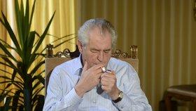 Prezident Miloš Zeman kouří na zámku v Lánech, ale i na cestách.