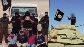 Egyptská teroristická odnož Wilayat Sinai napojená na Islámský stát nejspíš sestřelila ruský letoun nad Sinajem.