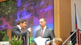 Zástupci ANO a ČSSD z rozpočtového provizoria obvinili Trojkoalici.