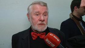 Europoslanec Štětina u soudu s Martou Semelovou