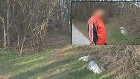 Teprve třináctiletou dívenku znásilnili nezletilí mladíci. Zeptali se jí, zda by se šla s nimi projít a pak ji zatáhli do lesa.
