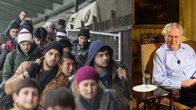 Usídlení uprchlíků v Česku podporují jenom 2 ze 100 Čechů. Prezident Miloš Zeman to vidí podobně.