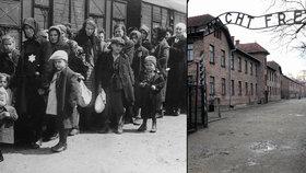 V koncentračním táboře Osvětim zemřelo přes 1,1 milionu lidí.