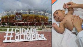 Letní olympijské hry v Brazílii jsou v ohrožení kvůli viru zika.