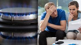 Blesk zjistil, z jakých částí se skládá cena za dodávku plynu.