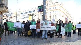 K protestu kvůli pracovním podmínkám na poště se sešlo zhruba 40 lidí.