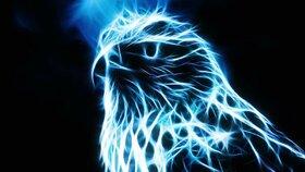 Orel je symbolem duchovního osvícení i léčivé a tvořivé síly