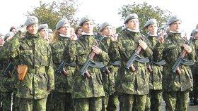 V zahraničních misích bude letos sloužit 810 českých vojáků.