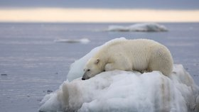 Letošní březen byl celosvětově nejteplejším v historii. A únor před ním také. Klimatologové varují. (ilustrační foto)