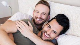 Gayové za svoji orientaci pravděpodobně vděčí i kvůli protilátkám k určitému proteinu.