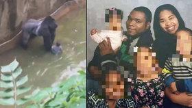 Rodiče malého chlapce jsou podle statisíců lidí za smrt gorily zodpovědní.