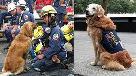 Zemřel hrdina z 11. září! Fence Bretagne selhaly ledviny.