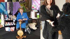 Podnikavá seniorka z Austrálie plete svetry z psů a koček.